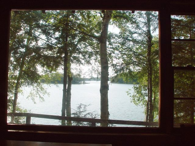 View from Whistle Wings Dining Table